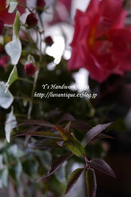 f0330978_12343729.jpg