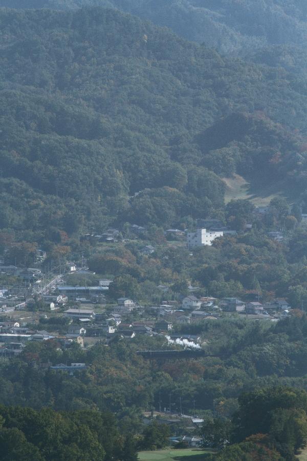 まだ緑の勝る横瀬川の白煙 - 2016年晩秋・秩父 -  _b0190710_23483297.jpg