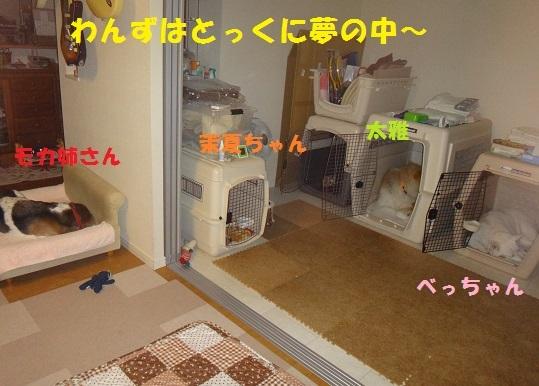 f0121712_23590087.jpg