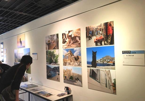 横浜赤レンガ倉庫ねこ写真展2016 レポート_f0357923_09531852.jpg