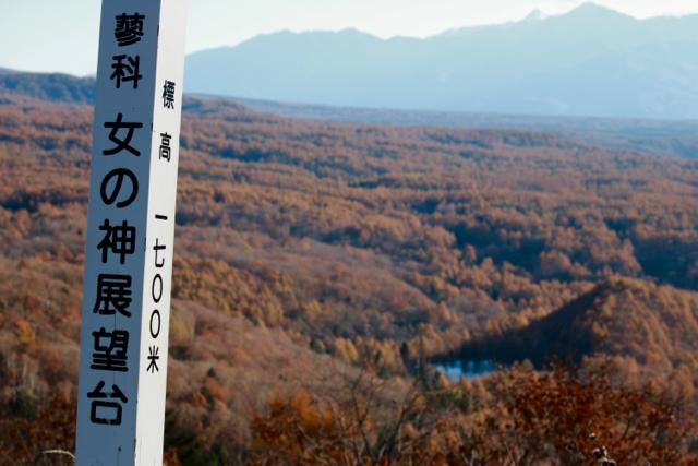秋の日帰り信州 part 3_f0348831_21251161.jpg