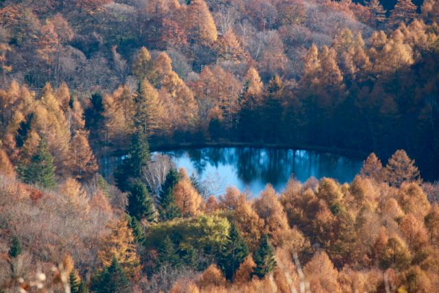 秋の日帰り信州 part 3_f0348831_21251446.jpg