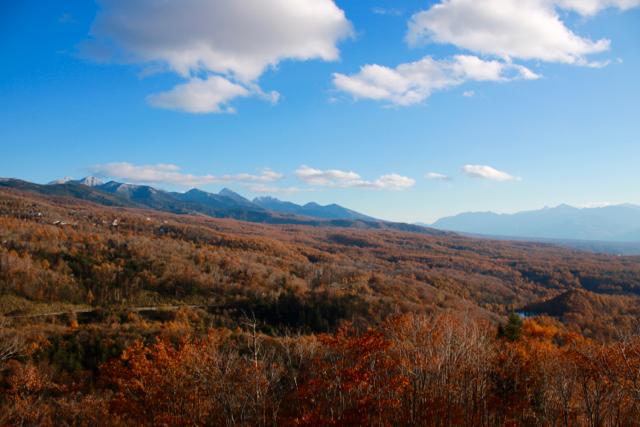 秋の日帰り信州 part 3_f0348831_21252011.jpg