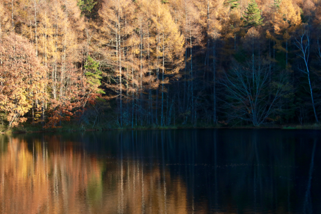 秋の日帰り信州 part 3_f0348831_21253723.jpg