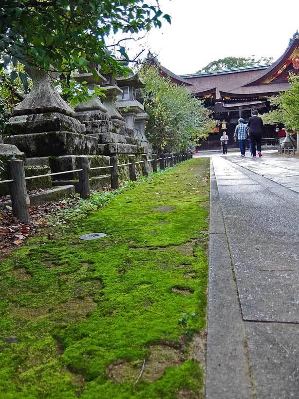 10/25 京都へ1_f0089079_00380041.jpg