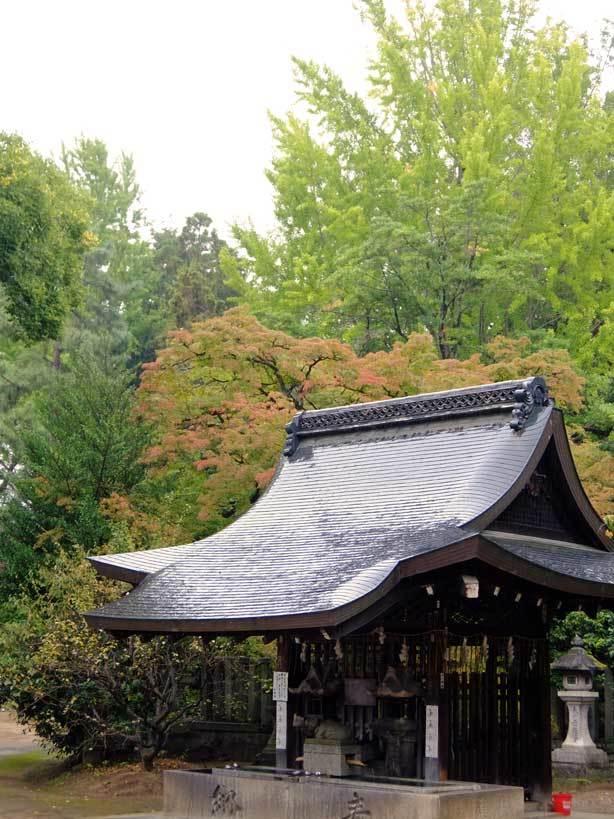 10/25 京都へ1_f0089079_00392541.jpg