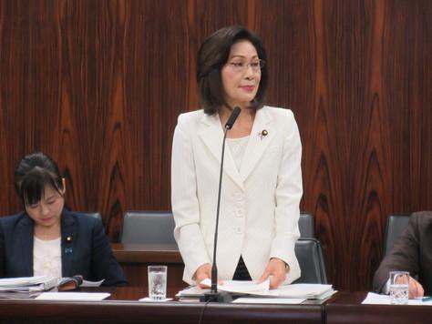 11/8 法務委員会で質問しました。_f0150886_1231592.jpg