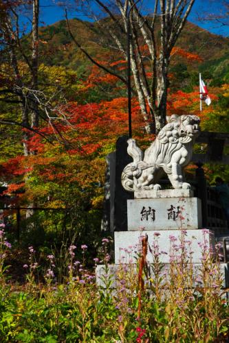 古峯原(こぶがはら) 古峯(ふるみね)神社の紅葉1_a0263109_18303462.jpg