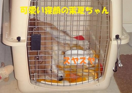 f0121712_00043174.jpg