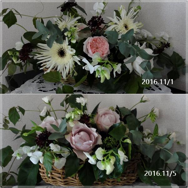 カリブチャイ10周年記念セミナー_c0079828_0315486.jpg