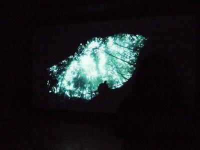 駿河の国の芸術祭「富士の山ビエンナーレ」_c0121933_18493897.jpg