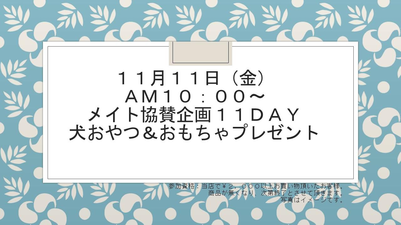 161109 11DAYイベント告知_e0181866_11442459.jpg