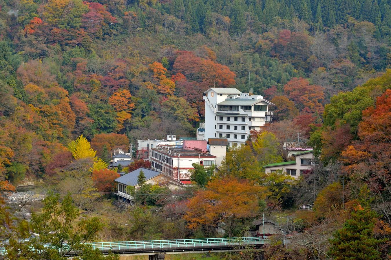 小原温泉 撮影11/8日_b0223668_8224629.jpg