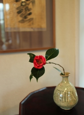 花だより 椿_a0279848_11444294.jpg