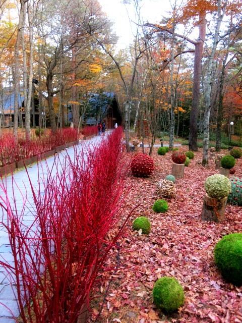 Art of Forest Autumn*ニコライ・バーグマン @軽井沢高原教会_f0236260_22534932.jpg