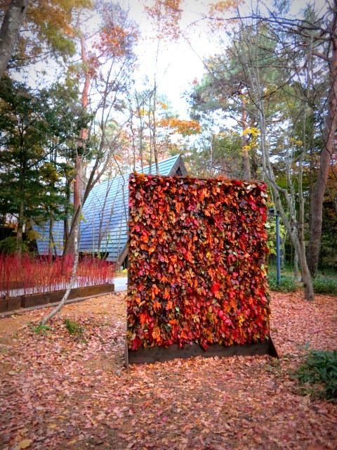 Art of Forest Autumn*ニコライ・バーグマン @軽井沢高原教会_f0236260_22543774.jpg