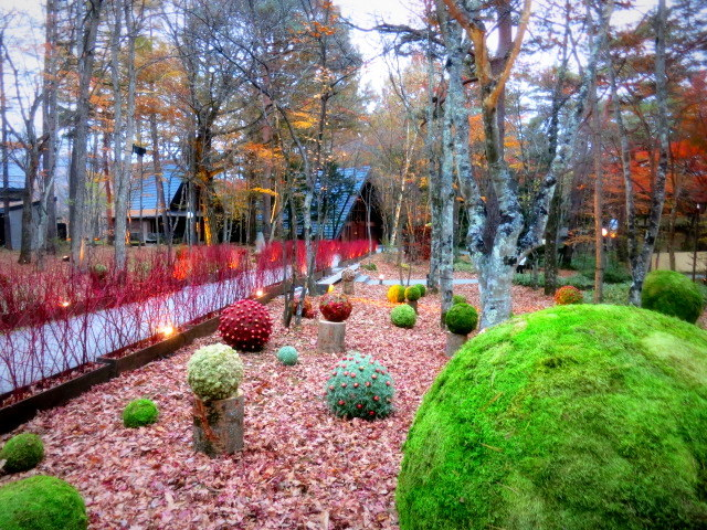 Art of Forest Autumn*ニコライ・バーグマン @軽井沢高原教会_f0236260_23141046.jpg