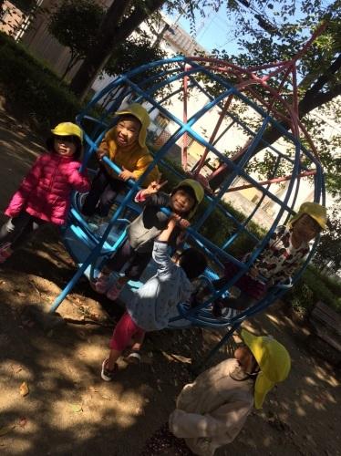 2・3歳児 くま・きりん組  どんぐり拾いへ_c0151262_12352803.jpg