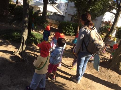 2・3歳児 くま・きりん組  どんぐり拾いへ_c0151262_12465176.jpg