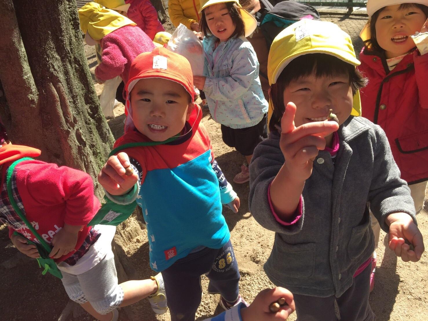 2・3歳児 くま・きりん組  どんぐり拾いへ_c0151262_12472568.jpg