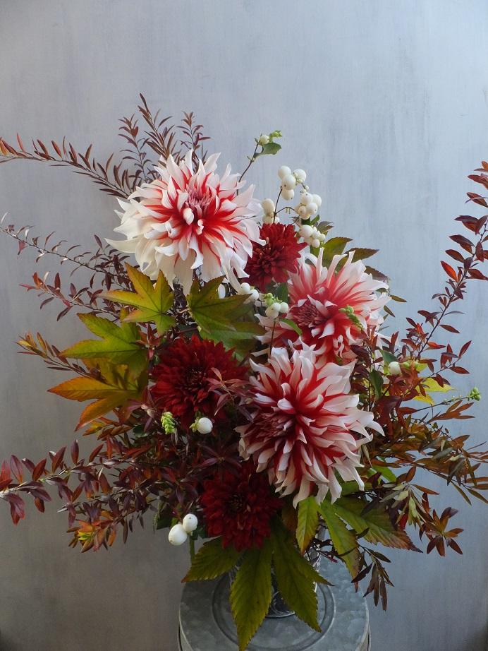 オークリーフ(赤っぽい花)_f0049672_1434255.jpg