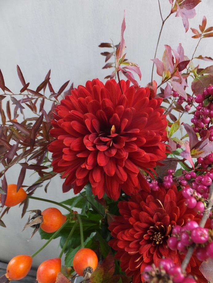 オークリーフ(赤っぽい花)_f0049672_14465179.jpg