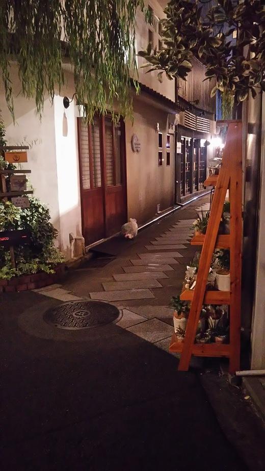 夜の京都・・・_b0282408_1755167.jpg