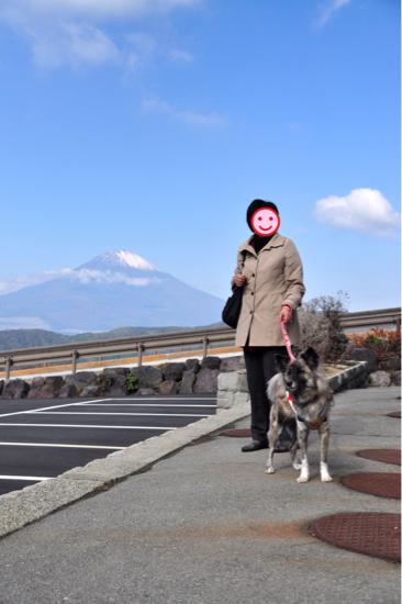 2016 秋の箱根旅行 その② 11/4編_f0329311_19093045.jpg