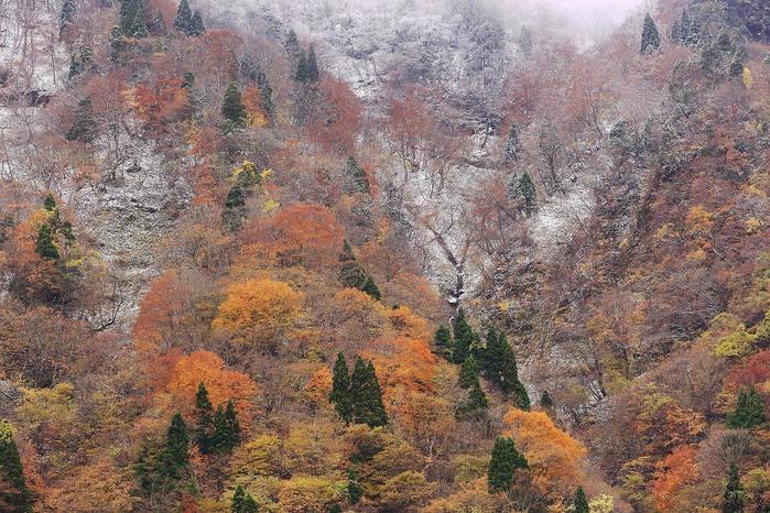 秋と冬_a0294534_19505751.jpg