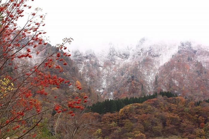 秋と冬_a0294534_19513547.jpg