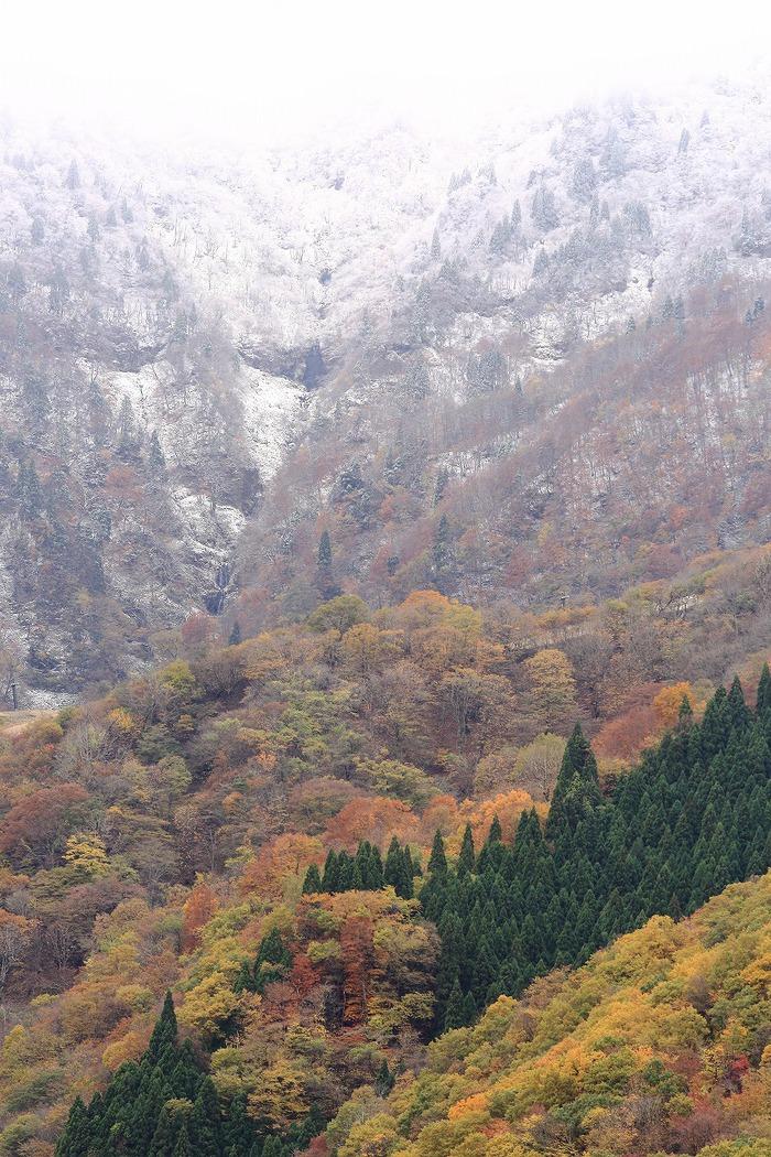 秋と冬_a0294534_19525228.jpg