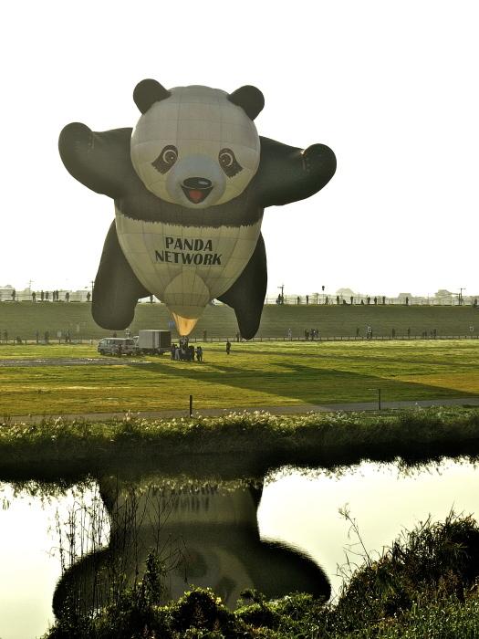 Panda & octopus_f0315034_13474100.jpg