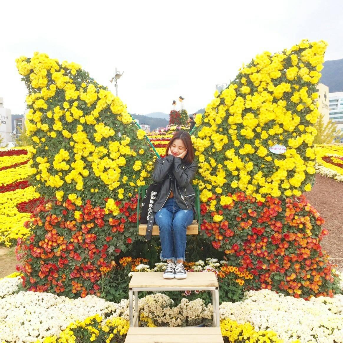 馬山菊祭り_d0160145_15273246.jpg