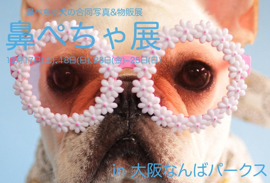 鼻ぺちゃ犬の合同写真&物販展 関西(なんばパークス)初上陸!_b0307951_19032242.jpg