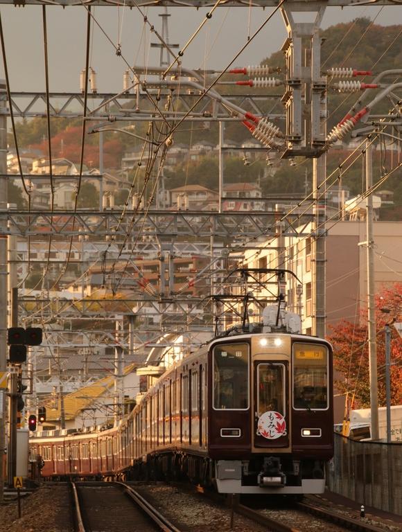 阪急8005F もみじ看板車 宝塚線_d0202264_1814720.jpg