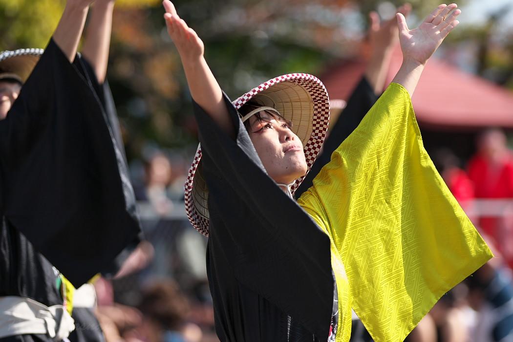 結 @ 豊明秋まつり 縁舞祭(えんぶさい)~乱舞フェスタ2016~_c0187584_2132463.jpg