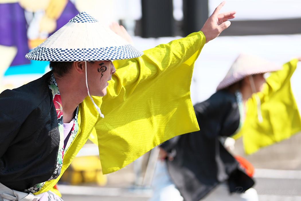 結 @ 豊明秋まつり 縁舞祭(えんぶさい)~乱舞フェスタ2016~_c0187584_21334144.jpg