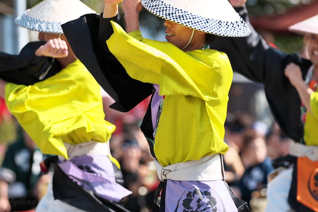 結 @ 豊明秋まつり 縁舞祭(えんぶさい)~乱舞フェスタ2016~_c0187584_2134923.jpg
