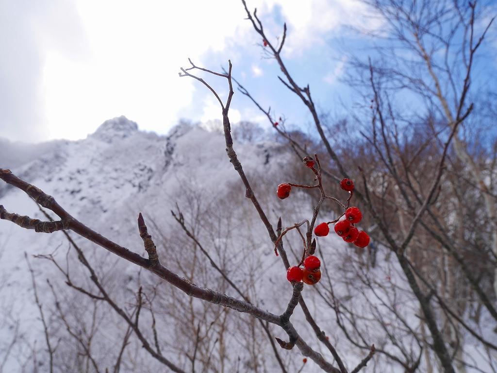 恵庭岳、11月10日-その1-_f0138096_0175589.jpg