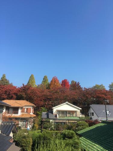 雲ひとつない秋晴れですね〜🍁🍂🍁_c0162404_10024288.jpg