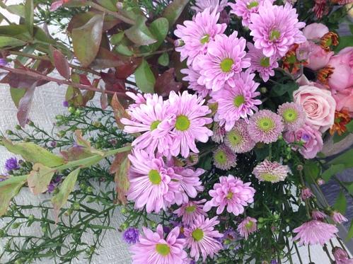 花粉とホコリと乾燥に注意!!_a0200423_1752326.jpg