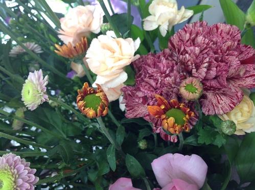 花粉とホコリと乾燥に注意!!_a0200423_1772054.jpg