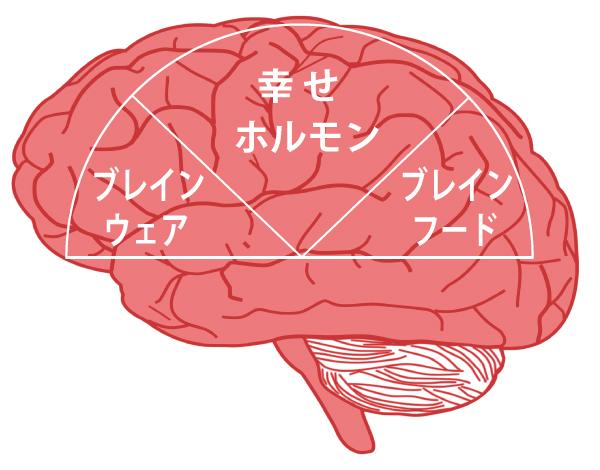 脳が喜ぶ〇〇〇とは?_e0053563_12594683.jpg