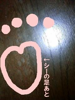 d0039189_21240208.jpg