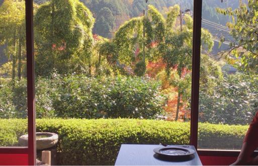 美山の紅葉_c0223630_16453994.jpg