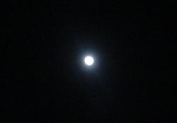 月夜に歩く白塗りの男_e0359436_09261844.jpg