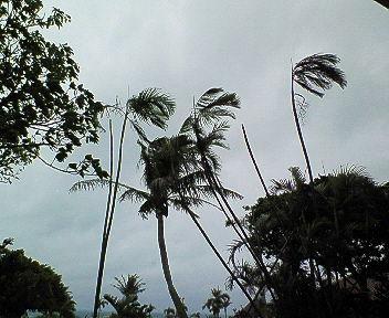 のろのろ台風_e0359436_14511529.jpg