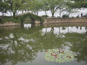 よろり上海*6 蘇州から無錫は太湖へ_e0359436_23260027.jpg