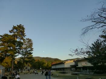 山添村から正倉院展_e0359436_23532814.jpg