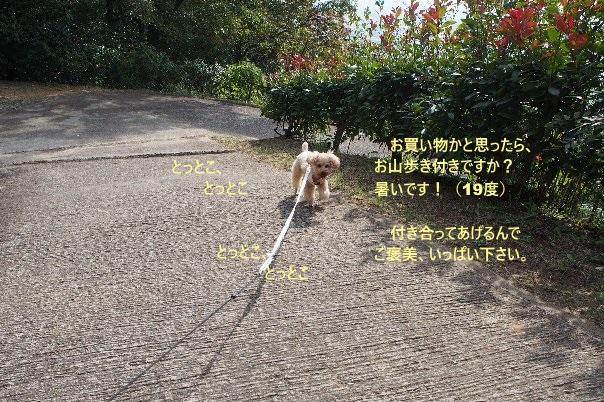 b0149340_19514331.jpg